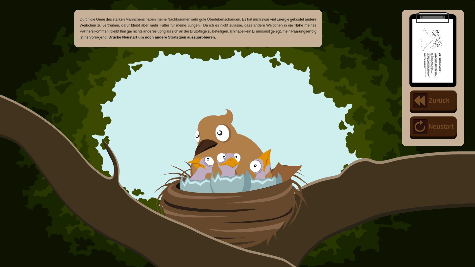 Grafik von Heckenbraunelle in ihrem Nest mit Jungen